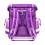 Ранец Classy Dolphin Purple с наполнением
